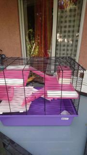 3 Stöckige Hamster/