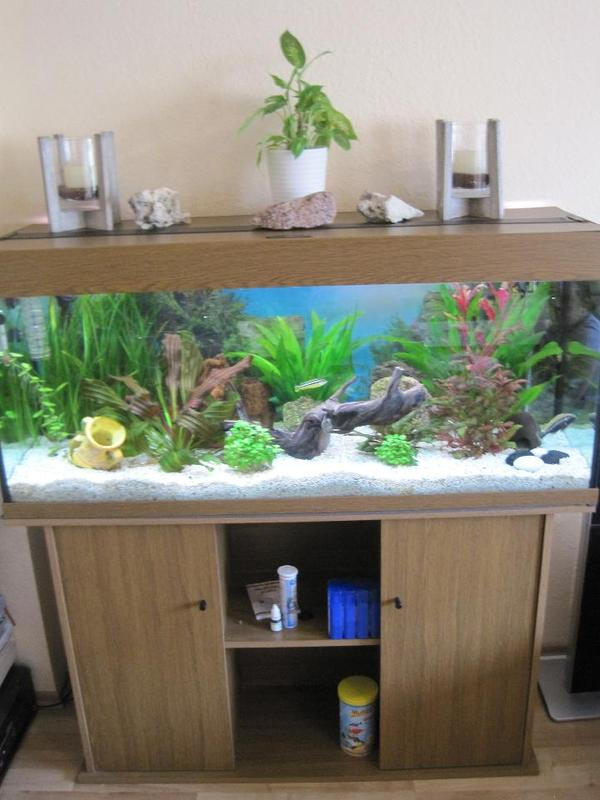 aquarium 250l komplett set schrank pumpe co2 anlage lampen xxl. Black Bedroom Furniture Sets. Home Design Ideas
