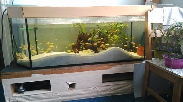aquarium 120 neu und gebraucht kaufen bei. Black Bedroom Furniture Sets. Home Design Ideas