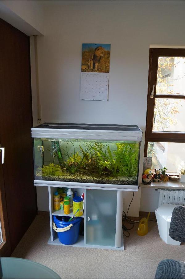 aquarium 180l mit unterschrank und viel zubeh r. Black Bedroom Furniture Sets. Home Design Ideas