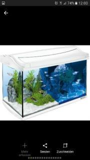 Aquarium LED mit
