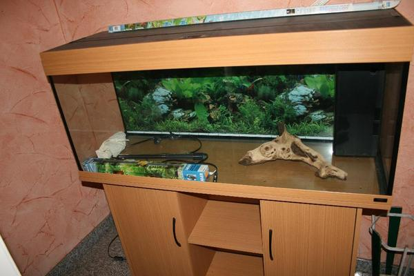 aquarium mit unterschrank in otterbach fische. Black Bedroom Furniture Sets. Home Design Ideas