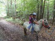 Biete Ponnyreiten und