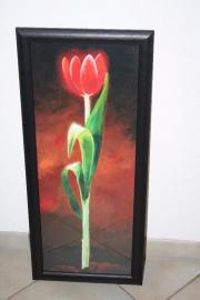 Blumenbild Tulpe Holzrahmen