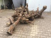 Brennholz an selbstabholer