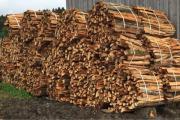 Brennholz Buche aus