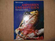 Buch Amphibien und