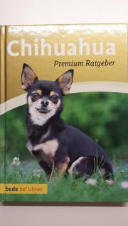 Chihuahua Buch