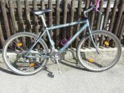 Damen Fahrrad Specialized