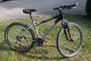 Damen MountainBike -Centurion