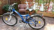 Fahrrad Pegasus 24