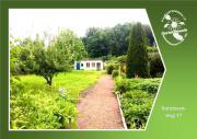 Freier Garten - Narzissenweg