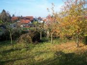 Freizeitgarten Lengfeld
