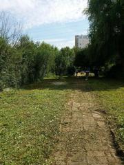Garten grundstuck