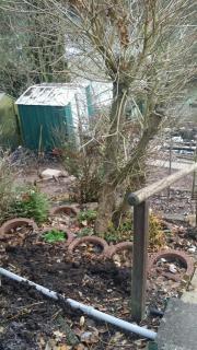 Gartengrundstück mit Haus