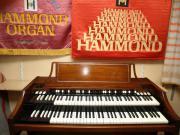 Hammond Orgel A-