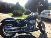 Harley Davidson,Softail