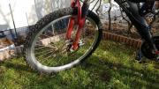 Herren MTB Fahrrad