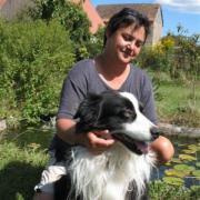 Hundebetreuung (Hundepension Hundesitting
