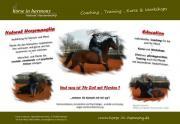 Individuelles Natural Horsemanship