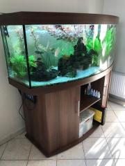 Juwel Aquarienkombination Vision