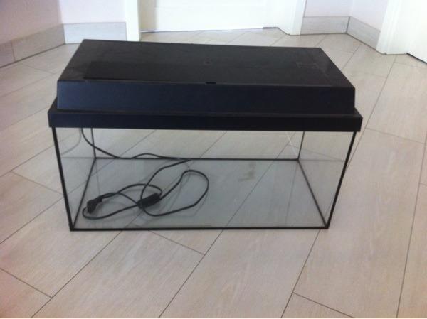 tiermarkt in wendelsheim rheinhessen kaufen bei deine. Black Bedroom Furniture Sets. Home Design Ideas