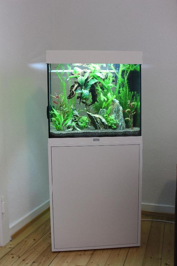 juwel aquarium lido 120 liter wei in karlsdorf neuthard. Black Bedroom Furniture Sets. Home Design Ideas