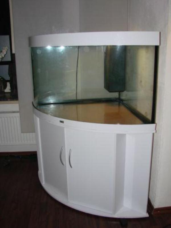 juwel trigon 350 eckaquarium in bremen fische aquaristik kaufen und verkaufen ber private. Black Bedroom Furniture Sets. Home Design Ideas
