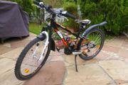 KTM-Mountainbike 24