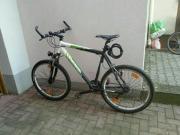Lakes Herren Fahrrad