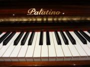 Makelloses Palatino-Klavier