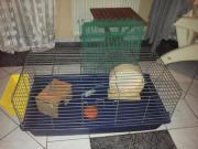 Meerschweinchen Hasen Käfig