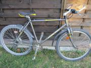 Mountainbike Crossbike Fahrrad