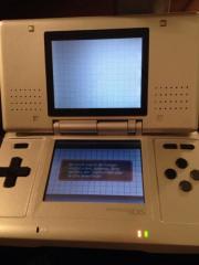 Nintendo ds mit