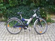 PEGASUS Mountainbike 24