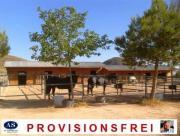Pferde-Ranch auf