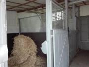 Pferdeboxen zu vermieten.(