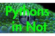 Reptilien in Not !!