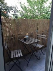 zaun gebraucht pflanzen garten g nstige angebote. Black Bedroom Furniture Sets. Home Design Ideas