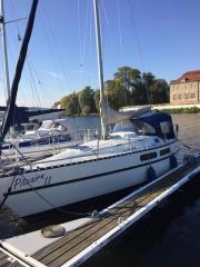 Segelboot / Segelyacht Hai