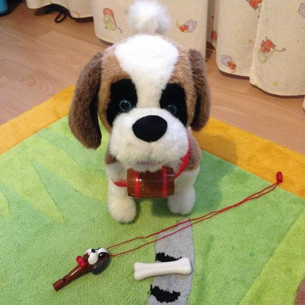Spielhund elektrisch läuft und bellt in nürnberg