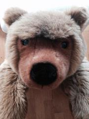 Steif Teddybär, top