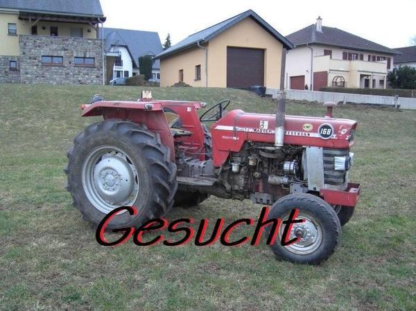 suche f r export massey ferguson mf traktoren bundesweit. Black Bedroom Furniture Sets. Home Design Ideas
