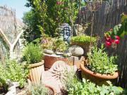 Suchen Freizeitgrundstück / Gartengrundstück