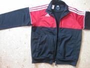 Trainingsanzug Adidas