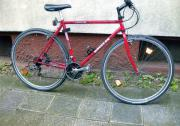 Trekking Bike von