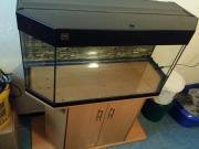 Verkaufe Juwel Aquarium