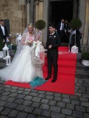 Weisse Hochzeitstauben Köln-