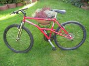 26er Mountainbike, Wheeler