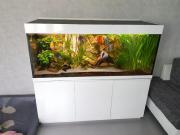 Aquarium 150x60x60 komplett